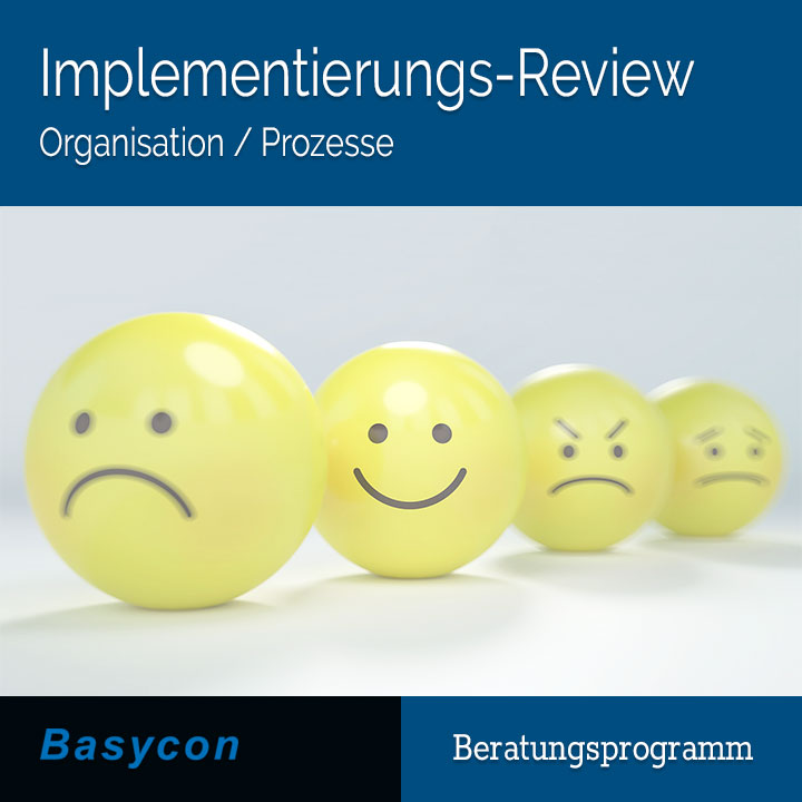 Implementierungs-Review Organisation/Prozesse