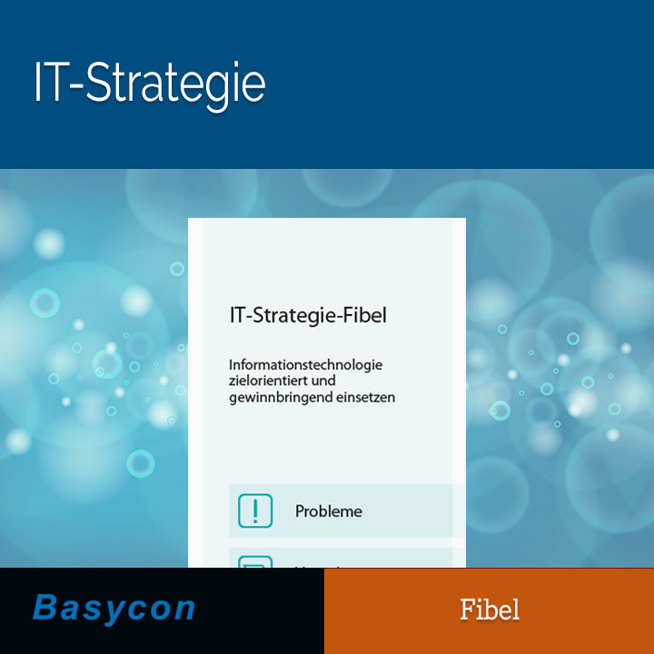 Fibel - IT-Strategie